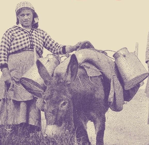 U pokretu: o putujućim trgovcima kroz, i u Istri