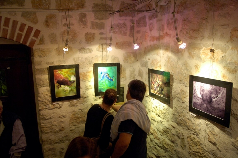 Exhibition of paintings Peter Karger
